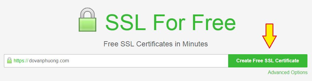 Nhập tên miền cần đăng ký SSL