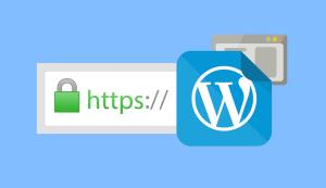 Cài https cho Wordpress