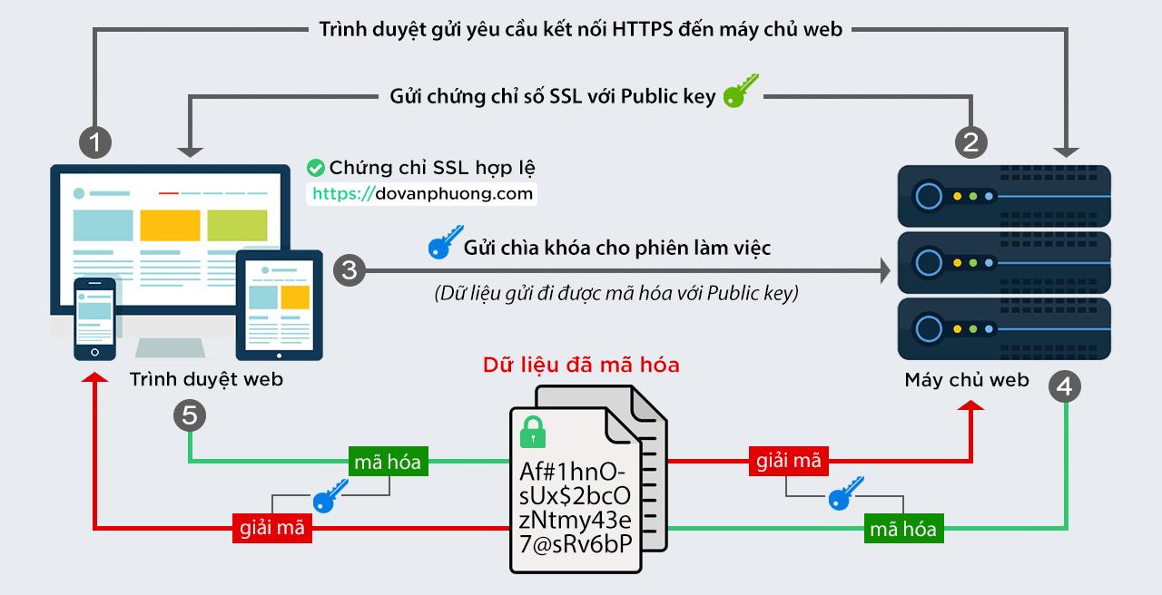 SSL hoạt động như thế nào?